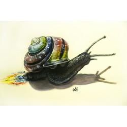 Paper Print - Eduardo the Snail