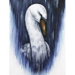 Print - Swan