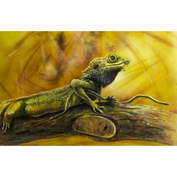 Original Painting - Red Bearded Pirate Dragon